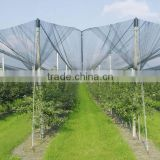 Hail Protection Net, Crop protection, Agricultural hail net, Anti-Hail Net,contro la grandine rete