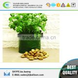 Custom 2Pack Garden Potato Grow Planter Bag, PE Fabric Plastic Green Planter Bags,Potato Planter