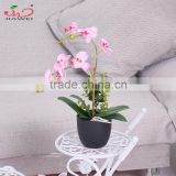 2016 Zhejiang Factory wholesale home decoration hot sale artificial plant orchid artificial flower