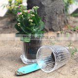 natural transparent decorative indoor flower pots with tray