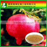 High quality Pomegranate bark extract powder Ellagic Acid