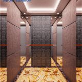 High Speed Passenger Elevator with Small Machine Room Residential Series and Stable Passenger Lift with Good Quality