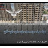 Anti Bird Perch Polycarbonate Bird Spikes Made In China-----TLD5003W5-33