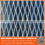 100% virgin hdpe uv wire mesh bird capture net , pe plastic fence bird protection net , nylon fruit anti bird protective net