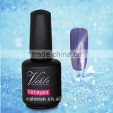 new Colors free sample Nail Art cat eye UV Gel Soak Off nail Polish