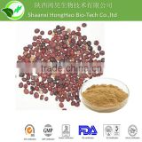 High Quality Bunge Cherry Seed Extract Bunge Cherry Extract Chinese Dwarf Cherry Seed extract natural