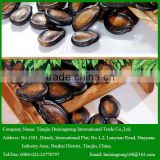 China Great Taste Black melon Seeds Width 10-11mm for Sale