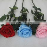 Wholesale Boxes Type Artificial Preserved Roses Colorful Flowers Bouquet Rose As Gift