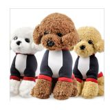 China Teddy Dog Plush Toys Manufacture with cheap price