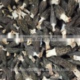 High Quality Morel Mushroom Can Lower Blood Pressure From Yunnan China