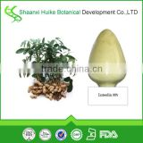 Manufactuer Supply Best Quality Peanut Shell Extract Luteolin in bulk with quick delivery time