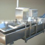 Hot selling vegetable washer