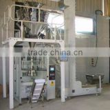 fruit snack plantain chips coconut chunks packing machine Equipment in China factory