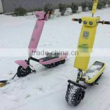Electric Snow Scooter / Snowmobile