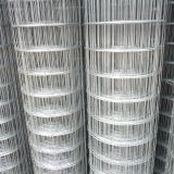 Galvanized Wire Mesh 4x4 Galvanized Wire Mesh For Fence Panel