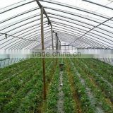 etfe greenhouse film 2015 etfe greenhouse film for wholesales                                                                         Quality Choice