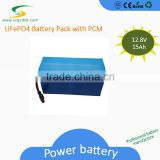 Factory Price Hot Sale LiFePO4 12V15Ah Battery Pack for Christmas Lights