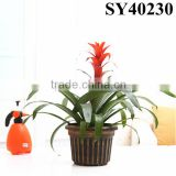 Painting round mini plastic pot plants wholesale