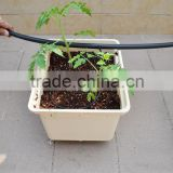 Hot-sale , Dutch buckets for growing tomatoes hydroponic system
