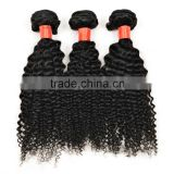 Free samples malaysian kinky curly hair virgin human hair extension for wholesale