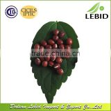 Heilongjiang Origin Organic Adzuki Bean Red Bean
