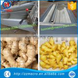 Stainless Steel Root Vegetable Washing and Peeling Machine