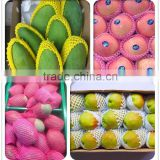 fruit Foam Rubber Mesh Netting