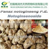 Promote Blood Circulation&Memory Pseudo-Ginseng/Panax Notoginseng Extract Notoginsenoside