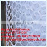 anping factory provide new Design for Farm House HDPE Black Plastic Mesh/ Chicken Coop Wire Netting