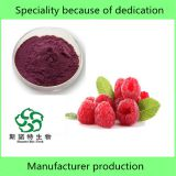100% Natural Raspberry Juice Powder for stock