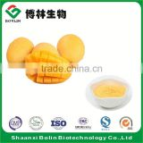Bolin Supply Best Mango Pulp Juice Concentrate Powder with Low Price
