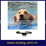new prodcut dog training collar/peted dog training collar/remote dog training collar with best price made in china