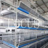 A & H type cage hot galvanized layer chicken cage for poultry equipment automatic farming house