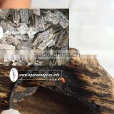 Supply Oud wood, Super gaharu Chips with very high quality, much oil for agarwood fragrance