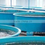 Aquaculture fish farm tank for fish rearing