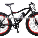 EN15194 500W Hub Mid-Drive Motor Electric Fat Bike