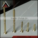 China double thread copper plated wood screw torx
