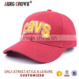 Hot Sale 3D Embroidery custom 6 panel baseball cap                                                                         Quality Choice