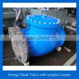 Ductile iron Swing type non return valve with counter weight & hydraulic damper