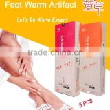 Daylily Heat Insole - Body Warmer to Keep Feet Warm - Foot Warmer for skiing
