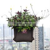 Supply single pocket living wall planter wall plant bag