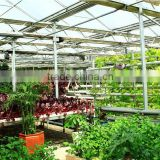 Made in China high strength fiberglass garden greenhouse,farm hothouses,glasshouse big shed