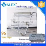 Semi automatic A type battery cages laying hens animal husbandry equipment 96 hens cages for sale