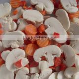 Frozen mixed vegetables/mixed vegetables/frozen vegetables factory