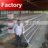 Factory 4 tiers 128 birds 160 birds types of layer chicken cages for zimbabwe poultry for sale