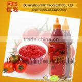 568g China factory Yilin branded tomato ketchup made in china hot sale in EUROPE country