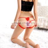 Lingerie Underwear Lace Sex Panty Knickers Women's Fashion Bikini