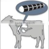 Y30BH Ferrite magnets, cow rumen magnets