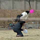 Outside sports Frisbee Disc Golf Dog Flying Disc