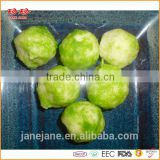 Frozen Juicy Vegetable Fish Ball-Medium